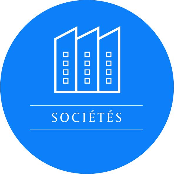 THELYS DROIT DES SOCIETES